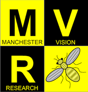 July 2020: Manchester Vision Network Annual Research Showcase