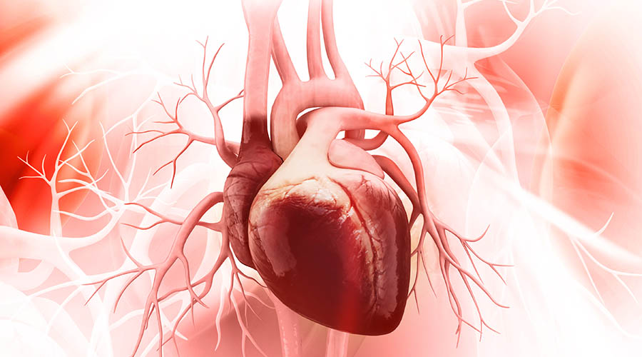 Tumour necrosis factor inhibitor drugs reduce the occurence of heart attacks
