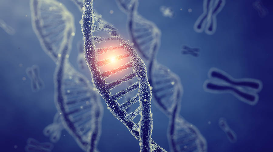 Gene variants show potential in predicting rheumatoid arthritis disease outcomes
