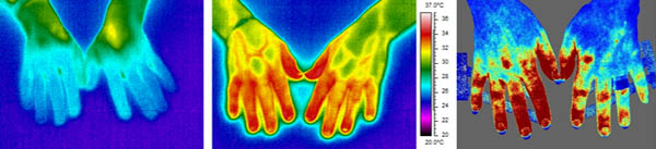 Thermal images of hands